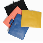 Envelope Documnets Bag